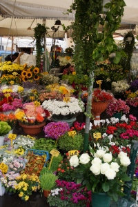 Flowers on the Campo di Fiori, of course